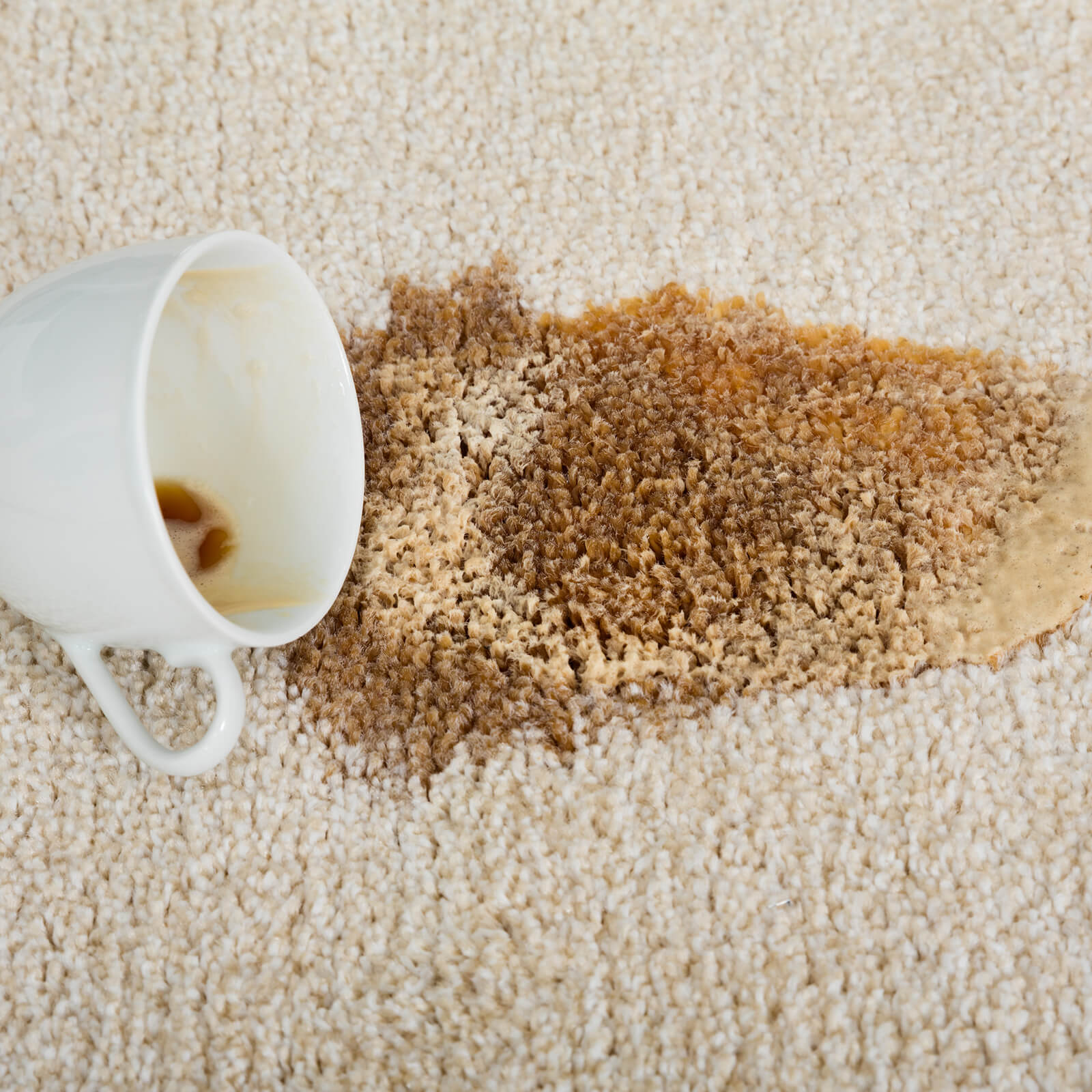 Carpet cleaning | BFC Flooring Design Centre